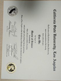The Most Safety Website to Buy Replica Diploma of C