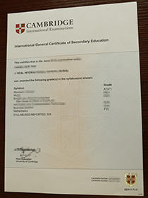 Buy fake IGCSE certificate