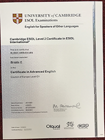 Yeah! I Moved to UK with a fake ESOL certificate(En