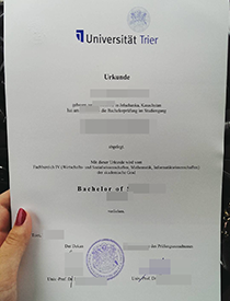 How About Buy Fake University of Trier (Universitä