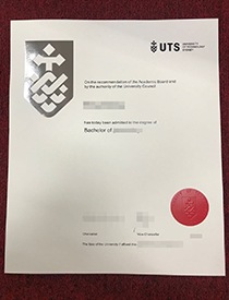 Why Can You Buy a Fake UTS Degree?