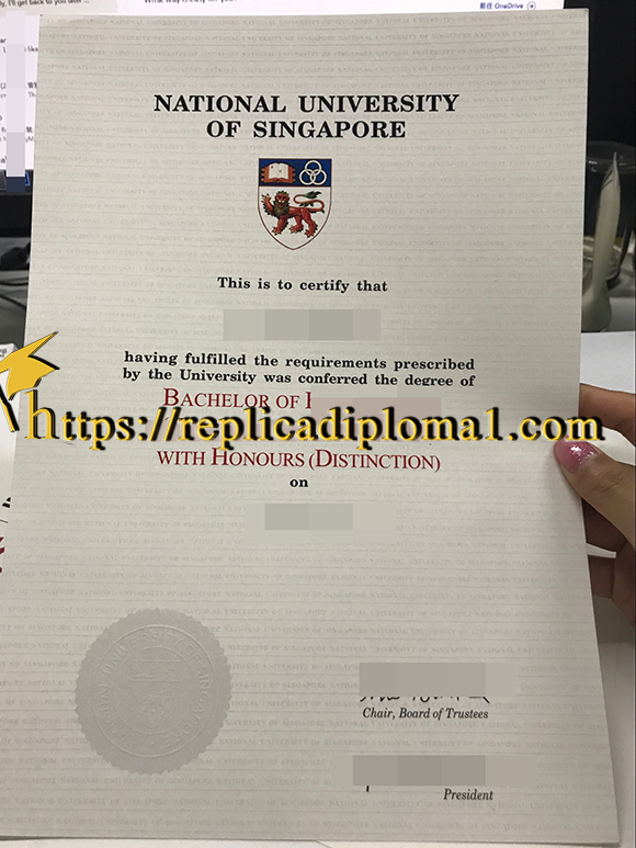 NUS degree, diploma of National University of Singapore